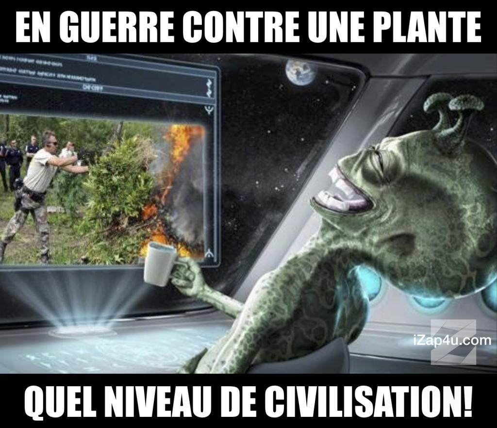 En-guerre-contre-une-plante