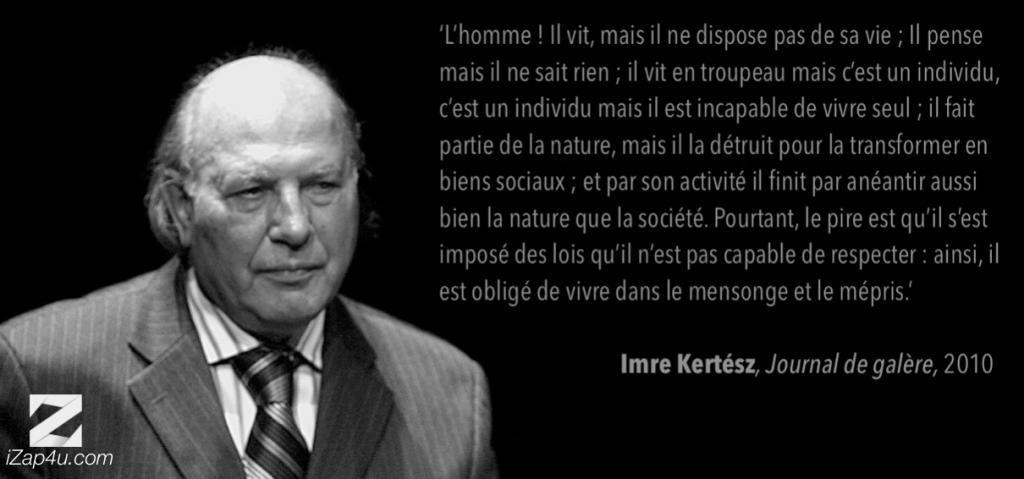 Kertesz-citation-TRUE